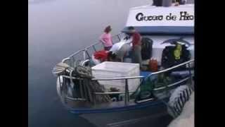 Campeonato Nacional de fotografía Submarina NAFOSUB 2006