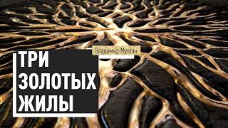 Три золотых жилы ( Часть 1 ) | Владимир Мунтян