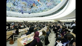 Universality in the Human Rights Council