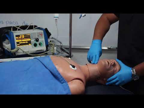 Ambas preparaciones normalizar la presión arterial