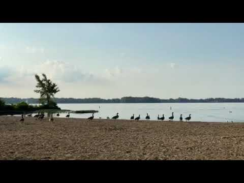 Video Of Indian Lake, OH
