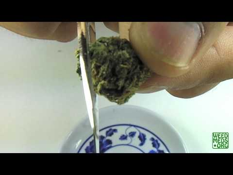 CPA Nuggetry Blue Dream (Medical Marijuana)