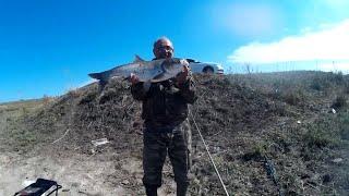 Рыбалка в ставропольском крае солнечный