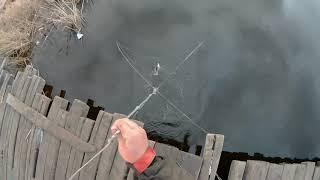 Как ловить на паука с моста