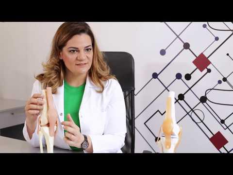 Produse pentru restaurarea articulațiilor și cartilajului