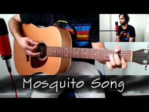 Mosquito Song - QOTSA cover by Chordings