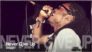 Zagga - Never Give Up [Tropical Escape Riddim] Dec 2012