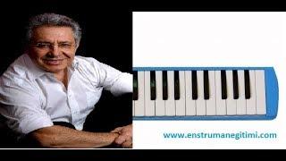 Melodika Eğitimi - Zülfü Livaneli - Güneş Topla Benim İçin Melodika