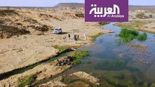 على خطى العرب: أسماك على طريق الهجرة - الحلقة 11