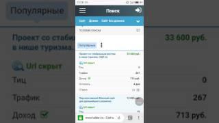 Обзор лота на телдери: сайт с бизнес идеями