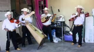 Conjunto De Arpa Grande (Las Isabeles) Jilgueros Michoacános 2012