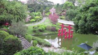 Video : China : Window of the World Park, ShenZhen 深圳