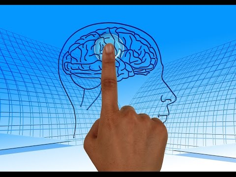 Video Modifiable risk factors for Alzheimer's disease