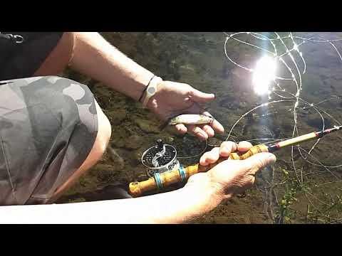 Pescando en arroyos de montaña