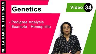 Genetics - Pedigree Analysis - Example - Hemophilia