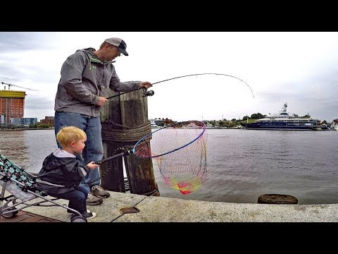 Bank fishing for catfish with worms. Catfishing tips: catfish bait, rigs and how to find catfish.