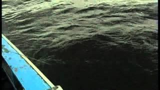 Рыбалка на слиянии двух рек ильд и сутка