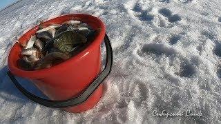 Малый рефт рыбалка на льду