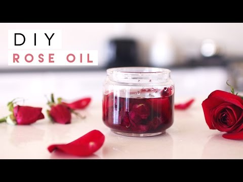 mp4 Rose Beauty Uses, download Rose Beauty Uses video klip Rose Beauty Uses