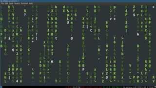 BashScripting3--VariablesandQuoting
