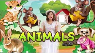 Bé học Tiếng Anh về ĐỘNG VẬT qua thẻ tiếng anh MA THUẬT - Magic English Flashcard Animals