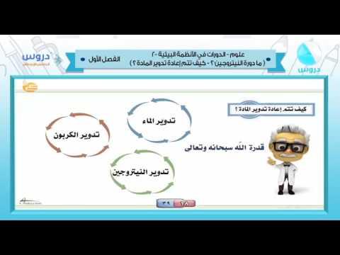 الخامس الابتدائي | الفصل الدراسي الأول 1438 | علوم | الدورات في الأنظمة البيئية 2