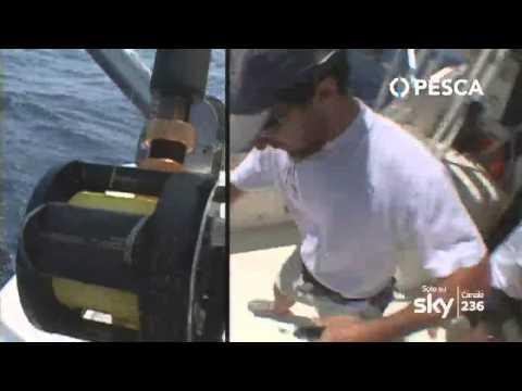 Il rakovo ha pagato la pesca come estendersi