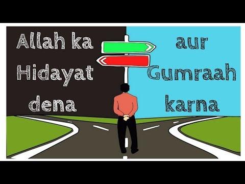 DarseQuran || Surah Al-Qasas (28:56-61)