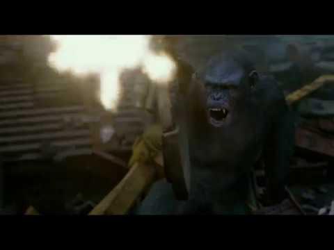 Планета обезьян: Революция. Ты не обезьяна. Цезарь убивает Кобу