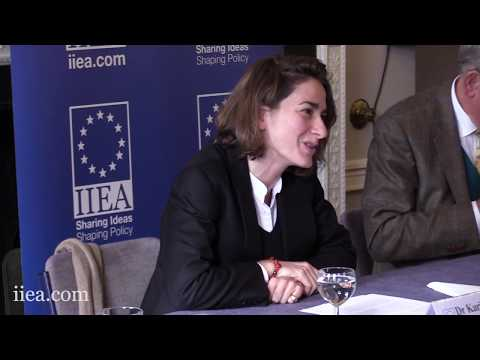 Dr Karine de Vergeron - A Future EU-China Partnership: France's Perspective