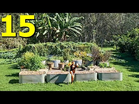 Tips to Help Gardeners Grow a Ton of Food with Ease