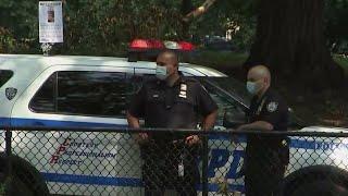 Man Playing Handball Killed By Stray Bullet as NYC Violence Continues | NBC New York