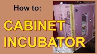 How to: Cabinet Incubator - 240 quail egg incubator