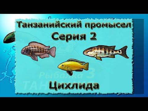 Русская Рыбалка 3.99 (Russian Fishing) Танзанийский промысел 2 - Цихлида