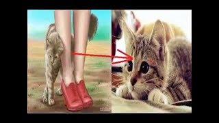 تحميل و مشاهدة إذا اقتربت منك قطة.. فهذا يعني أن هناك 3 رسائل من الله لك !! MP3