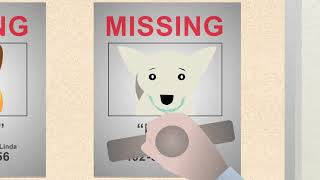 Hope for the best, but plan for the worst - microchip your pet!
