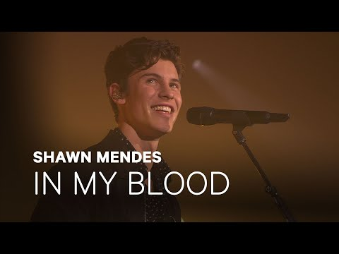 "Shawn Mendes - ""In My Blood"" 