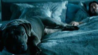 """Джон Уик 3 - Трейлер """"Хороший пёс"""""""