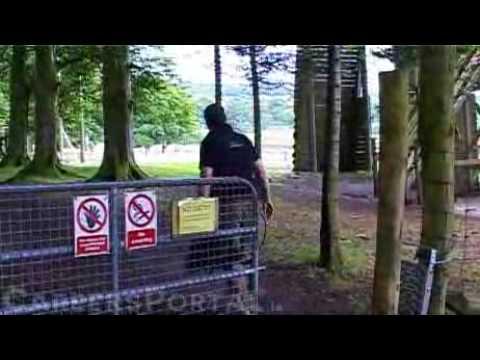 Martin Dunn - Careers Portal