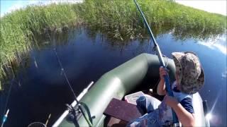Рыбалка на озере хорошее алтайский край