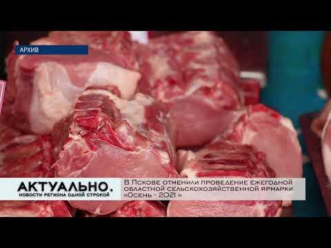 Актуально Псков / 23.09.2021