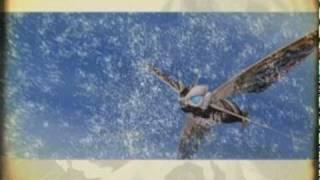 Rebirth of Mothra 1, 2, & 3