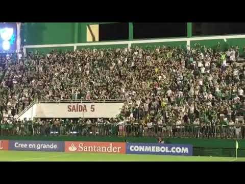 """""""Barra da Chape em pesso💚🏹"""" Barra: Barra da Chape • Club: Chapecoense"""