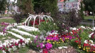Цветы, Красивейший цветочный  парк