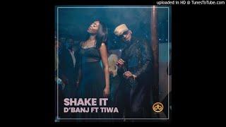D'Banj Ft. Tiwa Savage   Shake It
