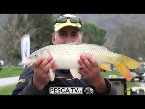 Pesca di video navaga