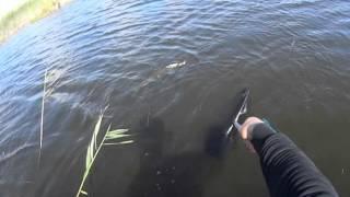 отчет о рыбалке февраль лопотово