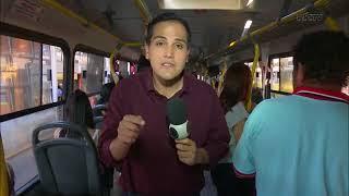Cachorros podem começar a usar ônibus em Londrina