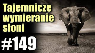 Setki słoni pada w Botswanie. Nikt nie wie co sie dzieje!