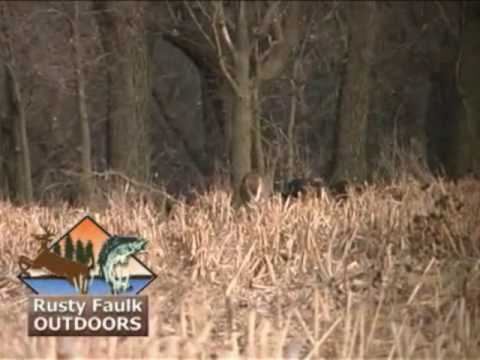 Rifle Deer Hunt